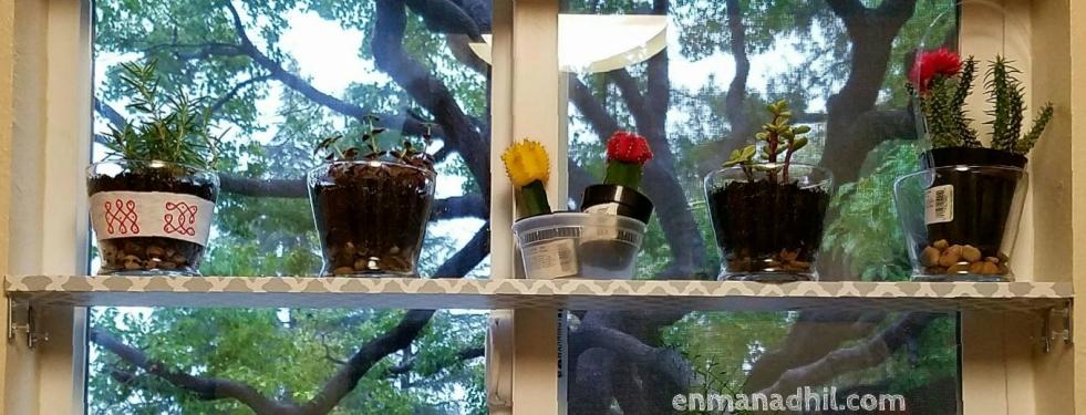 WindowLedgewithLivePlants